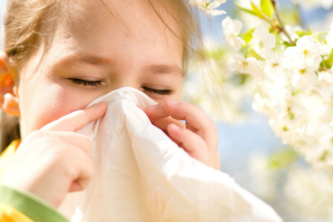 How Should You Deal With Summer Allergies